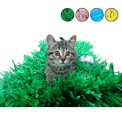 Tissue Paper Grass Mat for cat or kitten. pet toy toys. UK Stock Fast Delivery