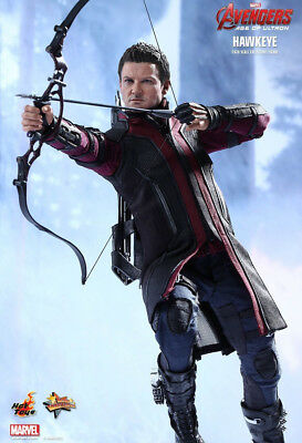 Avengers 2 - HAWKEYE 1:6 scale figure Hot Toys MMS289  Marvel - NEW