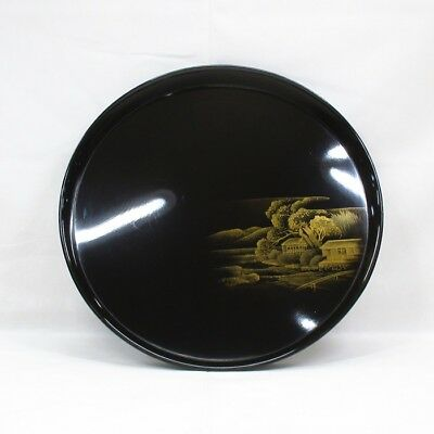 D172: Japanese old lacquered circular tray with wonderful TOGIDASHI-MAKIE. 9/9