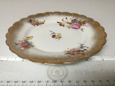 Antique Hand Painted Plate 7 1/2 Inches