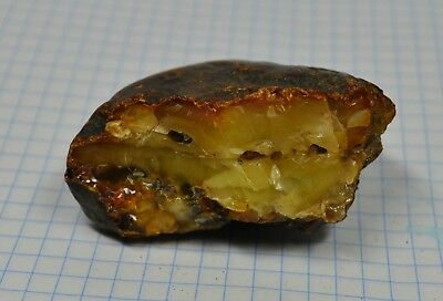 34.87g Baltic Amber Real Great White Color Natural Antique Old Bernstein Faturan