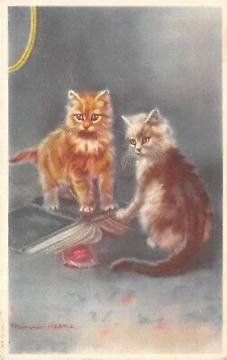 POSTCARD  CATS   Kittens                       Minnie  Keene