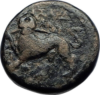 SARDES in LYDIA 133BC Authentic Ancient Greek Coin DIONYSUS and PANTHER i70430