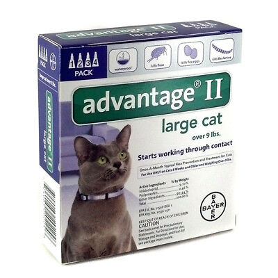 Bayer Advantage II Flea Treatment for Large Cats Over 9 lbs - 4 Doses