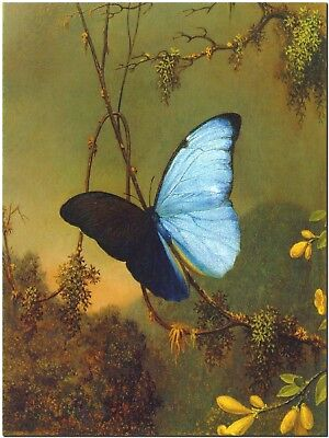 Blue Butterfly by Martin Johnson Meade Canvas Print Poster 8X10""