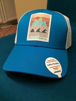 VERY RARE NEW W TAGS Patagonia Geodesic Flying Fish mesh hat in Camo ... 8003d5746577