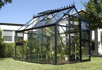 Junior Victorian VI 23 Greenhouse