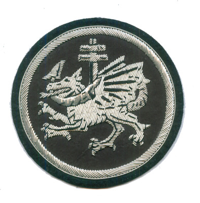 Medieval Vlad Impaler Dragon Dracula Prince Wallachia Hungary Knigt Patch War XX