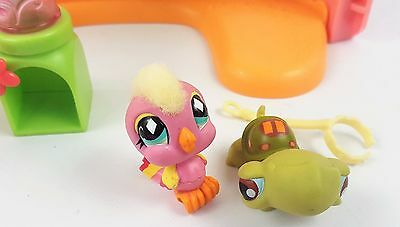 Littlest Pet Shop Turtle Pink Bird Bundle Set Accessories LPS Toy Figures