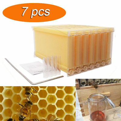 7Pcs Upgraded Auto Flow Honey Hive Beekeeping Beehive Frame Harvesting AU Ship