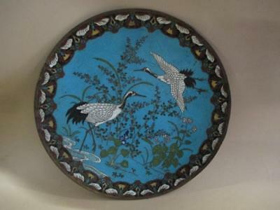Cloisonne charger, Chinese, Japanese, antique