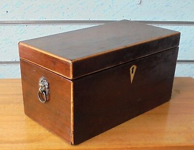 Large Antique Rosewood Tea Caddy With 3 Compartments & Lion Head Handles