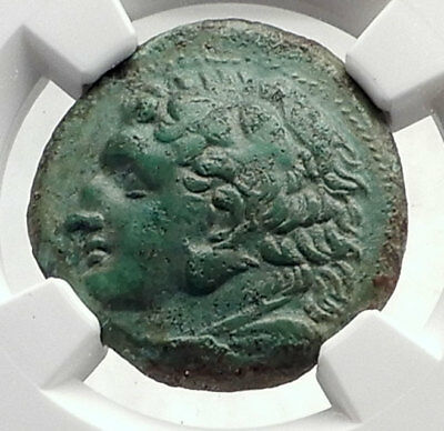 SYRACUSE in SICILY under PYRRHOS Hercules Athena Ancient Greek Coin NGC i70556