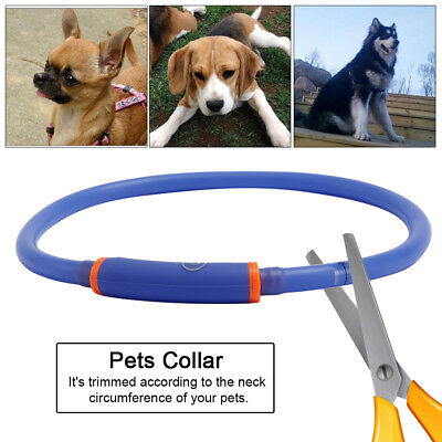 USB Rechargeable Pet Collar LED Light Flashing Band Puppy Dog Cat Safety Belt