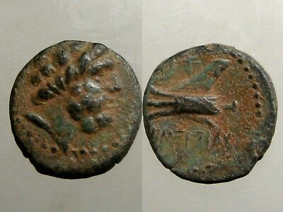 ARADOS PHOENICIA BRONZE AE16___Triple Pointed Ram of Galley__SPARED BY ALEXANDER