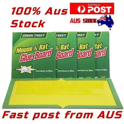1/5/10x Insect None Toxic Mice Glue Bait Adhesive Mouse Rat Rodent Sticky Trap