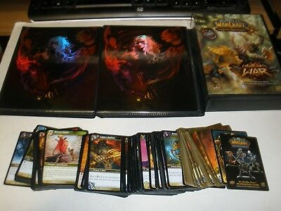 Huge World Of Warcraft Card Lot Over 300 Cards With Booklets And Case