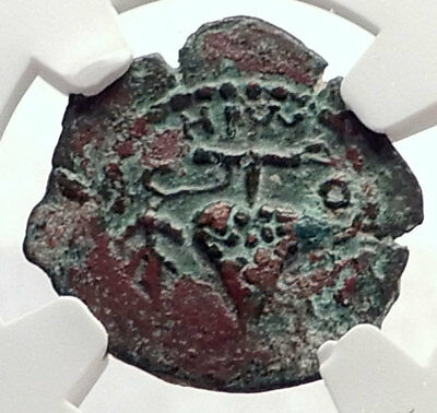 HEROD ARCHELAUS 4BC Biblical JERUSALEM Jewish KING Ancient Greek Coin NGC i70831