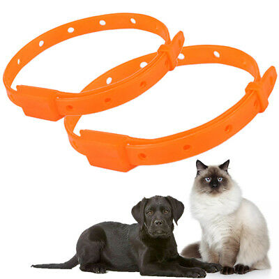 Pet Cat Dog Collar Protection Neck Ring Anti Flea Tick Mite Louse CollarSale;