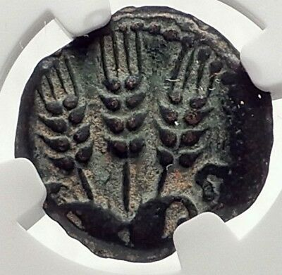 Herod AGRIPPA I JERUSALEM Biblical Claudius Time Ancient Greek Coin NGC i70851