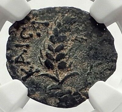 COPONIUS Prefect of Roman JERUSALEM under Augustus 6AD BIBLICAL Coin NGC i70862