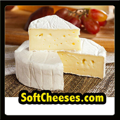 SoftCheeses.com PREMIUM Soft Cheeses/Food/Store/Shop/French DOMAIN NAME, WOW $