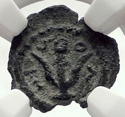 HEROD ARCHELAUS 4BC Biblical JERUSALEM Jewish KING Ancient Greek Coin NGC i70974