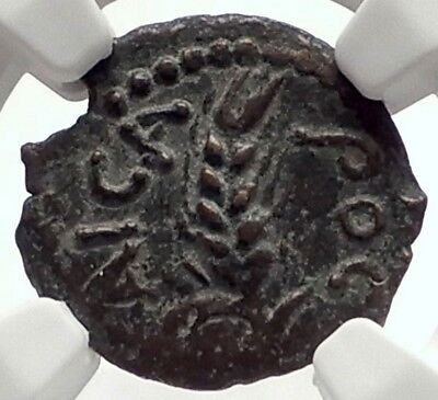 COPONIUS Prefect of Roman JERUSALEM under Augustus 5AD BIBLICAL Coin NGC i70981