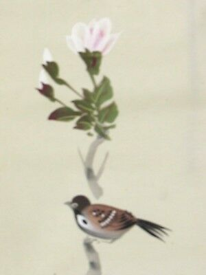 Japanese Wall Scroll ~ Hand Painted Artist Signed Bird Perched Flowers #HS002