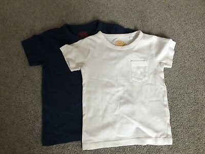 Next Boys 2 Pack T-shirts 12-18 Months