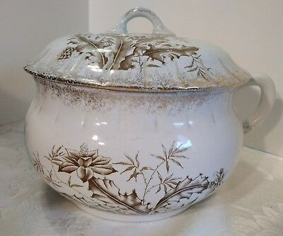 Chamber Pot With Lid, Brown Floral Design, Minneapolis