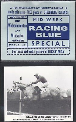 Racing Blue-Horse Racing- Stalbridge Colonist (Card+ Original Envelope)