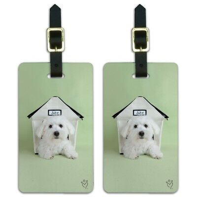 Bichon Frise Maltese Puppy Dog in House Luggage ID Tags Cards Set of 2