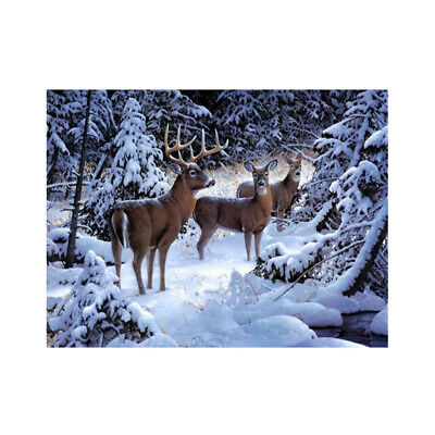 Animal Stag DIY 5D Diamond Painting Embroidery Cross Craft Stitch Art Kit