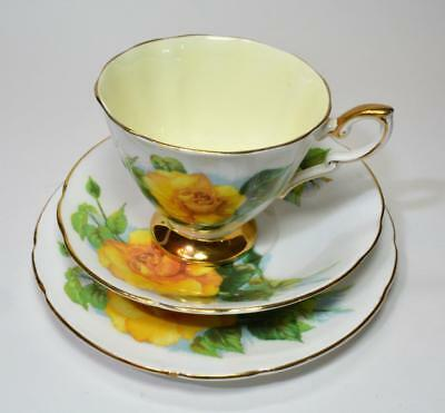 Vintage PARAGON England World Famous Roses MME CH SAUVAGE Trio Cup Saucer Plate