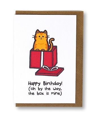 The Box Is Mine Cat Greeting Card