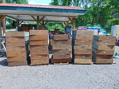 35-Vtg Oak Hardware Store Drawers Or Apothecary Drawers