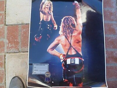 VAN HALEN David Lee Roth Limited Edition print - obscure - 50% REDUCTION!!