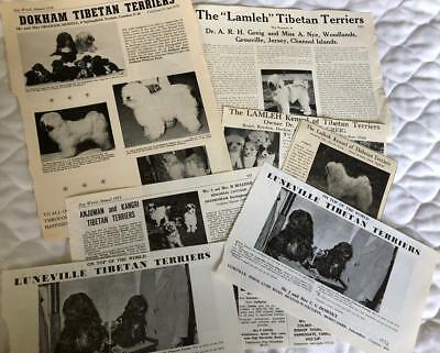 Lot of Tibetan Terrier Dog Paper Items Clippings Kennel Ads 1933-1979