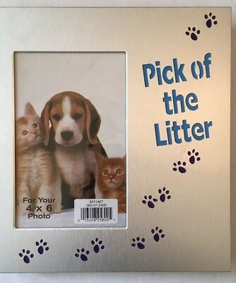 Cat Dog Pet 'Pick of the Litter' Photograph Photo Picture Frame Metal