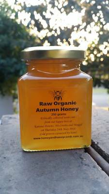 Raw Organic Autumn honey 2018 in glass square jar. 250 grams. Apiarist direct.