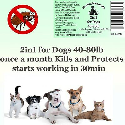 2in1 instant Flea Killer and Control for large Dogs 40-80lb All in one 6 months