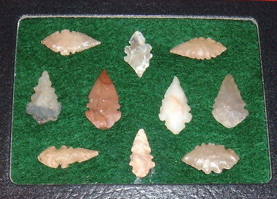 (10) Select Mini Sahara Neolithic Eccentric Points W/CASE Prehistoric Arrowheads