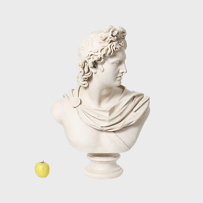 Spain Art Replica (head)- Belvedere Apollo / 76H cm / 20 kg