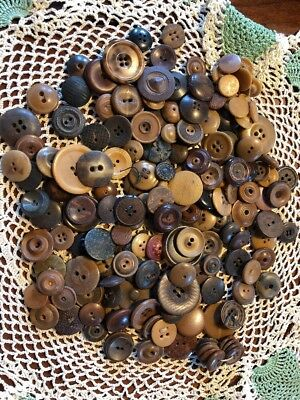 GREAT VINTAGE LOT 160 VEGETABLE IVORY BUTTONS Nut & Other cvd dyed fancy Lot3sp