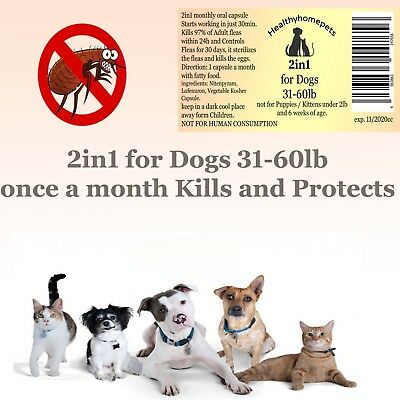 2in1 instant Flea Killer and Control for medium Dogs 31-60lb in one oral capsule