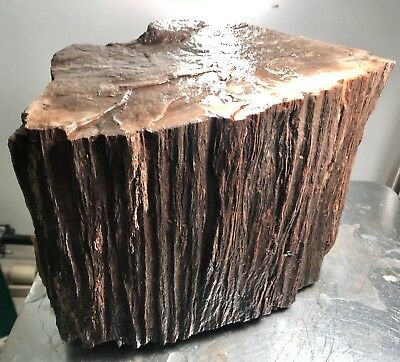 Arizona Petrified Wood With Shimmery Quartz Features, 21 Lbs.