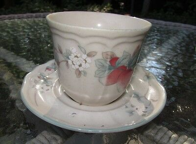 Epoch China Apple Magic  Cup & Saucer