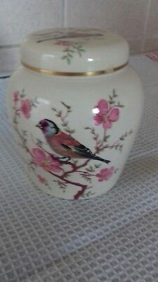 Palissy Ginger  Jar - Cherry Blossom and Chaffinch  5-1