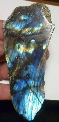 BIG! Bright Yellow & Blue LABRADORITE Polished Slab 505cts for Cabochons